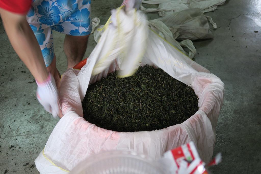十三製茶 (14)