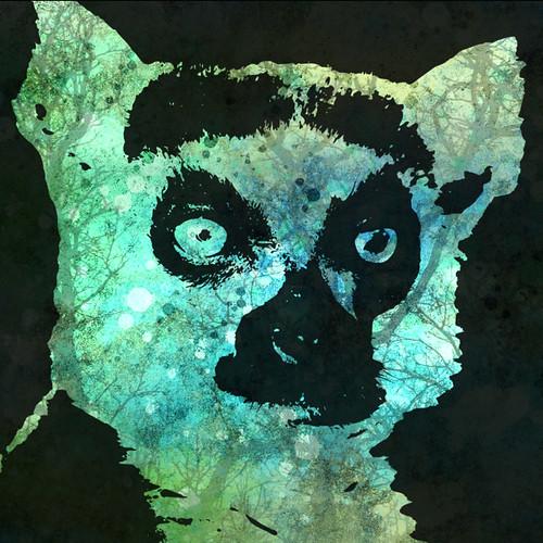 Lemur digital collage