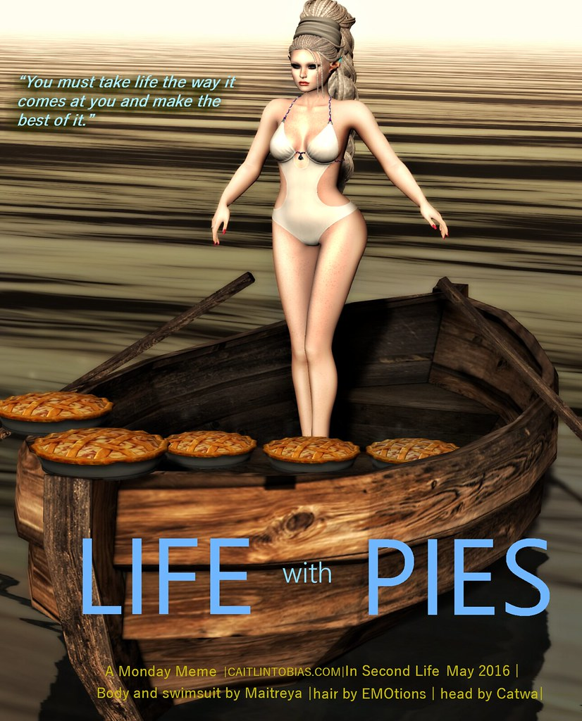 Life with Pies - Monday Meme