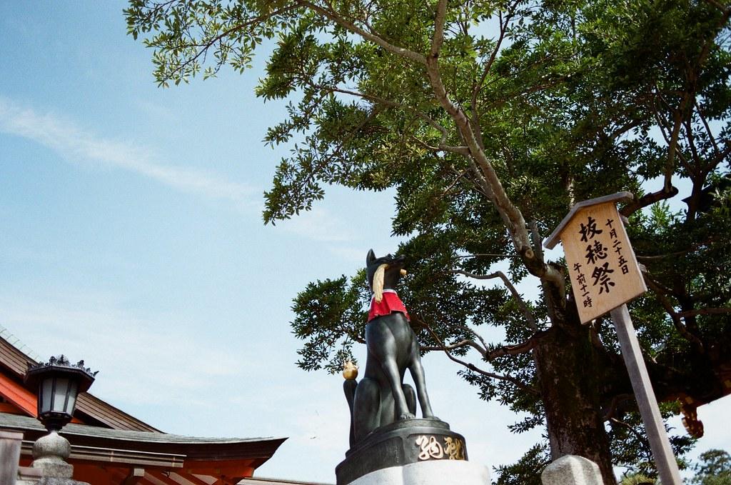 伏見稻荷 京都 Kyoto, Japan / Kodak ColorPlus / Nikon FM2 我想起第一次來京都的時候,那時候本來也要來這裡,但是從奈良過來京都,然後要再從京都回到大阪感覺有點累,所以最後就放棄,直接回到大阪買東西。  那時候是和前女友來的。  Nikon FM2 Nikon AI AF Nikkor 35mm F/2D Kodak ColorPlus ISO200 0991-0039 2015/09/29 Photo by Toomore