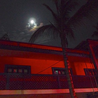 Moon's so bright like to light...