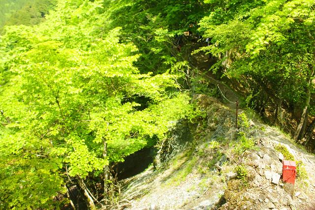 2014-05-24_00115_鍋割山.jpg
