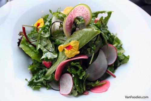 Earth Apple Farms Mixed Kale