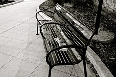 Forgotten Books and a Bench - Elgin IL