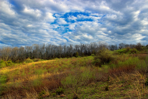 trees sky nature field clouds newjersey spring hiking meadow creativecommons vegetation stratocumulus warrencounty hopetownship honeyrunwildlifemanagementarea
