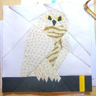 Hedwig Pod Quilt a long