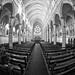 St. Joseph's, Dunedin. by gomezthecosmonaut