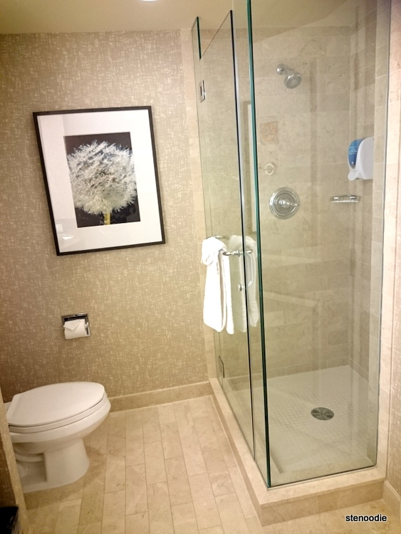 Fallsview shower and toilet in bathroom