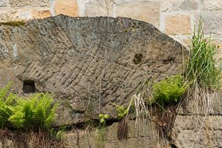 Sandsteinplatte mit fossilen Spuren