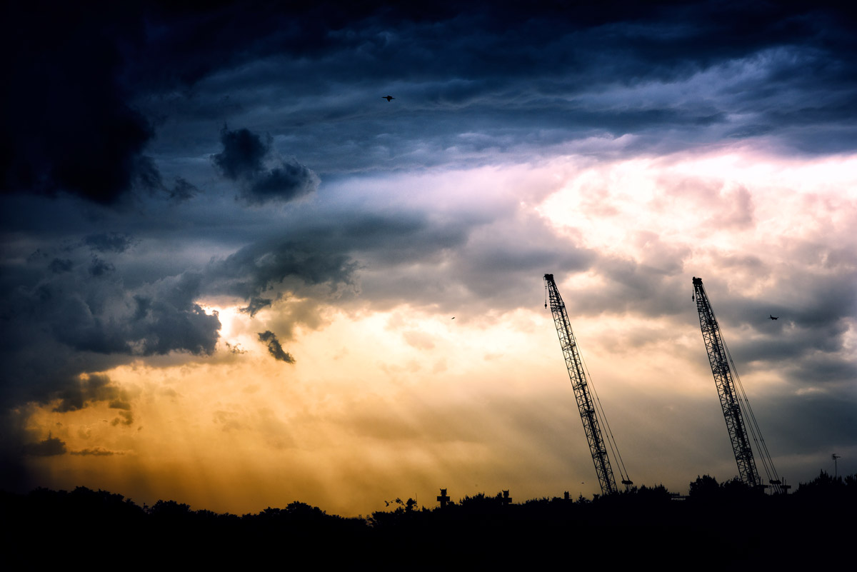 Photograph of cranes against a yellow and blue skyline.