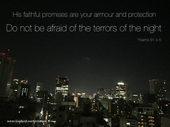 He will cover you with his feathers. He will shelter you with his wings. His faithful promises are your armor and protection. Do not be afraid of the terrors of the night, nor the arrow that flies in the day. (‭Psalms‬ ‭91‬:‭4-5‬ NLT)