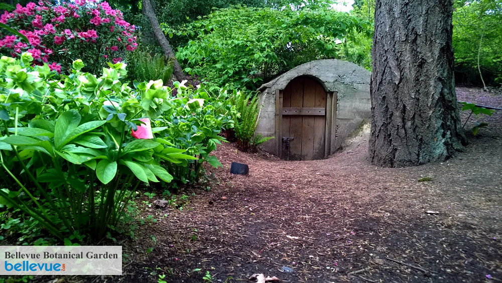Bellevue Botanical Garden Bellevue Attractions Events