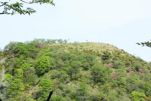 2014-05-24_00303_鍋割山.jpg