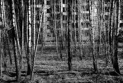 CHERNOBYL 2015 IN MONOCHROME