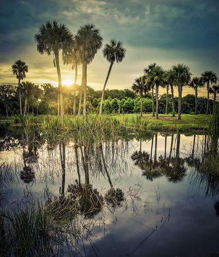 clouds sunrise unitedstates florida bradenton bennettpark landscapephotography manateecounty