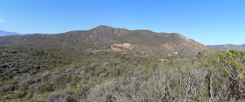 Lookout Mountain (elev 5590 ft). The PCT climbs over its left shoulder.