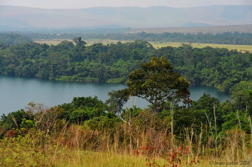 africa forest landscape nikon african congo paysage bruno hdr forêt afrique brazzaville lacbleu riperine d700 ripicole lesiolouna brunoportier forêtripicole