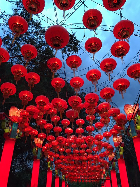 Zoominations Chinese Red Lanterns