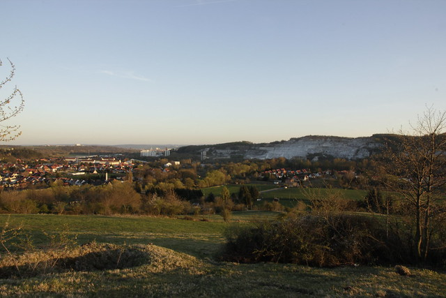 """Naturschutzgebiet """"Mühlberg"""""""