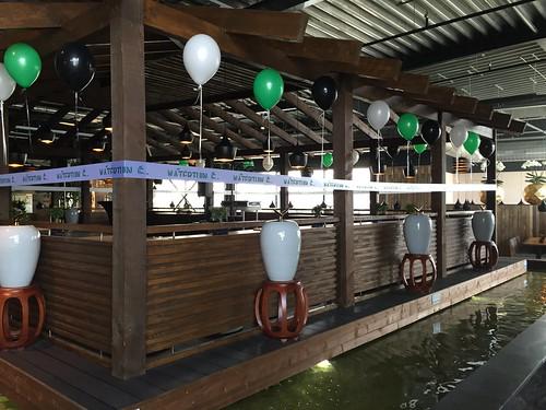 Heliumballonnen Opening Watertuin Spijkenisse