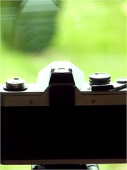 [Explored] Is a Camera self-conscious ? ( #FlickrFriday on #BehindTheLens ) - Photo of Croisilles