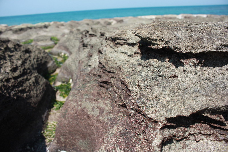 17度C台二線景點-石門-老梅綠石槽 (55)