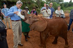 U.S. Secretary of State John Kerry feeds a baby elephant at the Sheldrick Elephant Orphanage in Nairobi National Park in Nairobi, Kenya, on May 3, 2015, following a wildlife tour of the Park and before a series of government meetings. [State Department Photo/Public Domain]
