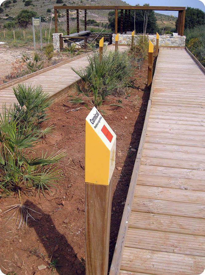 Medio Ambiente instala una pasarela interpretativa para mostrar las especies autóctonas de Calblanque