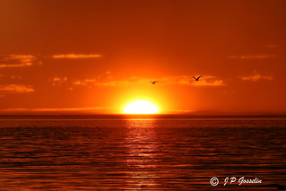 SUNSET OVER  ST. LAWRENCE RIVER  |   REFORD GARDENS   |   GASPESIE  |  QUEBEC   |  CANADA