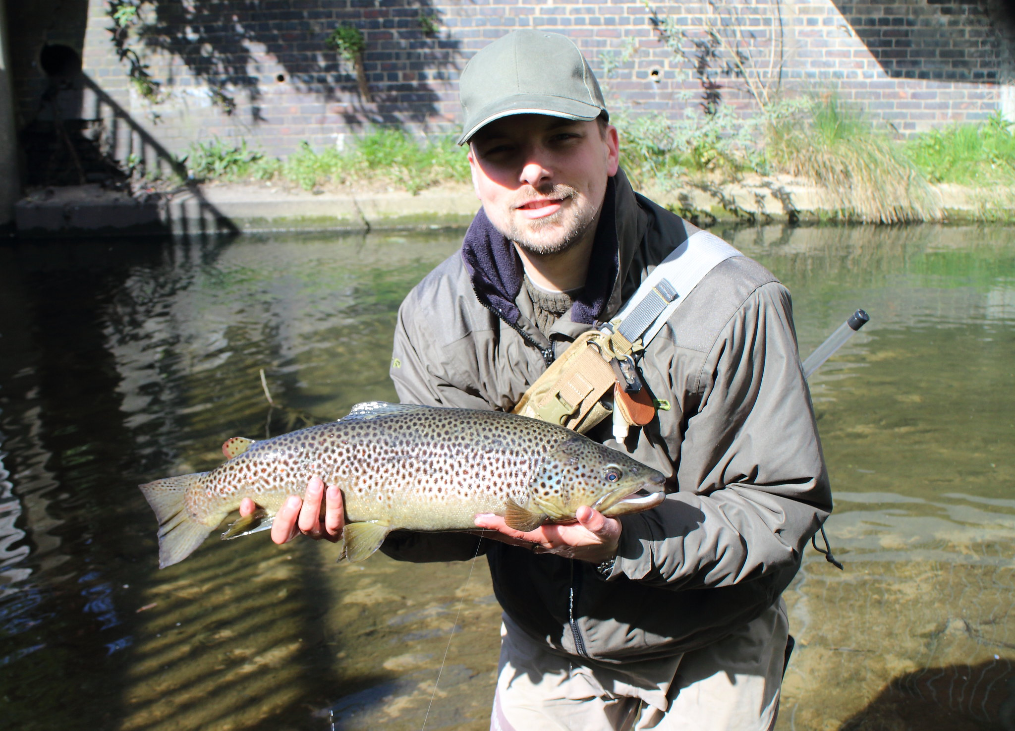 6lb 1oz Urban Brown Trout