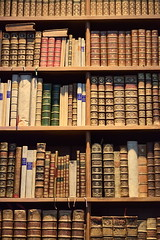 shelving, shelf, furniture, wood, library, archive,