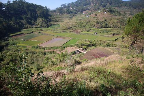 travel green nature rural outdoors rice philippines manila fields sagada ricefields metromanila