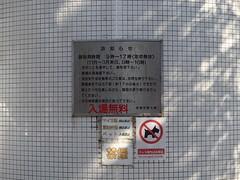 伊豆半島 城ケ崎 散歩 - naniyuutorimannen - 您说什么!