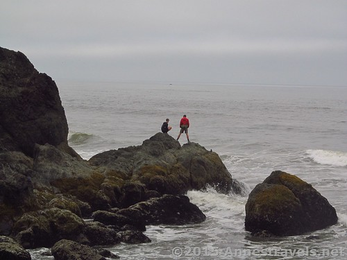 Watching the incoming tide on Ruby Beach, Olympic National Park, Washington