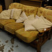 Dutch oak 3 seater sofa
