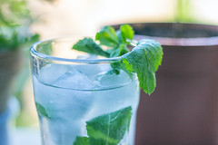 Mojito cocktail, cocktail con rum bianco menta lim…