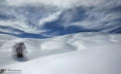 Cascata della Cavata (Monti della Laga - Abruzzo)