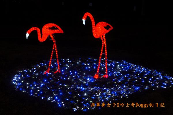 日本大阪城公園梅林城天守閣3D光之陣16