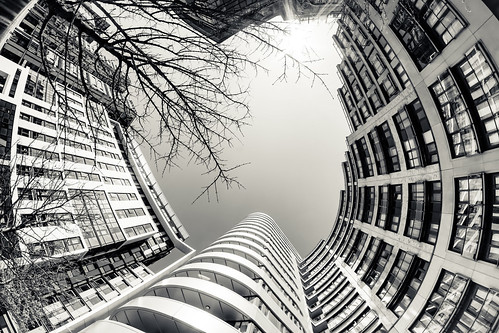 fisheye architecture london lookingup building bw distorted city contrast urban abstract sky skyline skyscraper tower lines round rings simonandhiscamera vertical vertigo vignette white winter window pattern texture geometric surreal trees