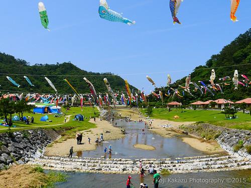 奥ヤンバル鯉のぼり祭り-2