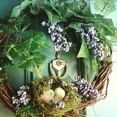 I wanted to copy a wreath I saw online, but didn't get to a big craft store. We stopped at Dollar Tree...got the grapevine wreath, reindeer moss, purple  berries and ivy. Only used glue for the moss. Nest bought elsewhere. Under $9 because tbe nest was pr