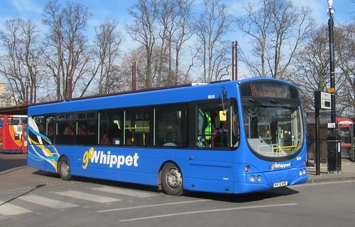 Go Whippet WS311 X472 AHE