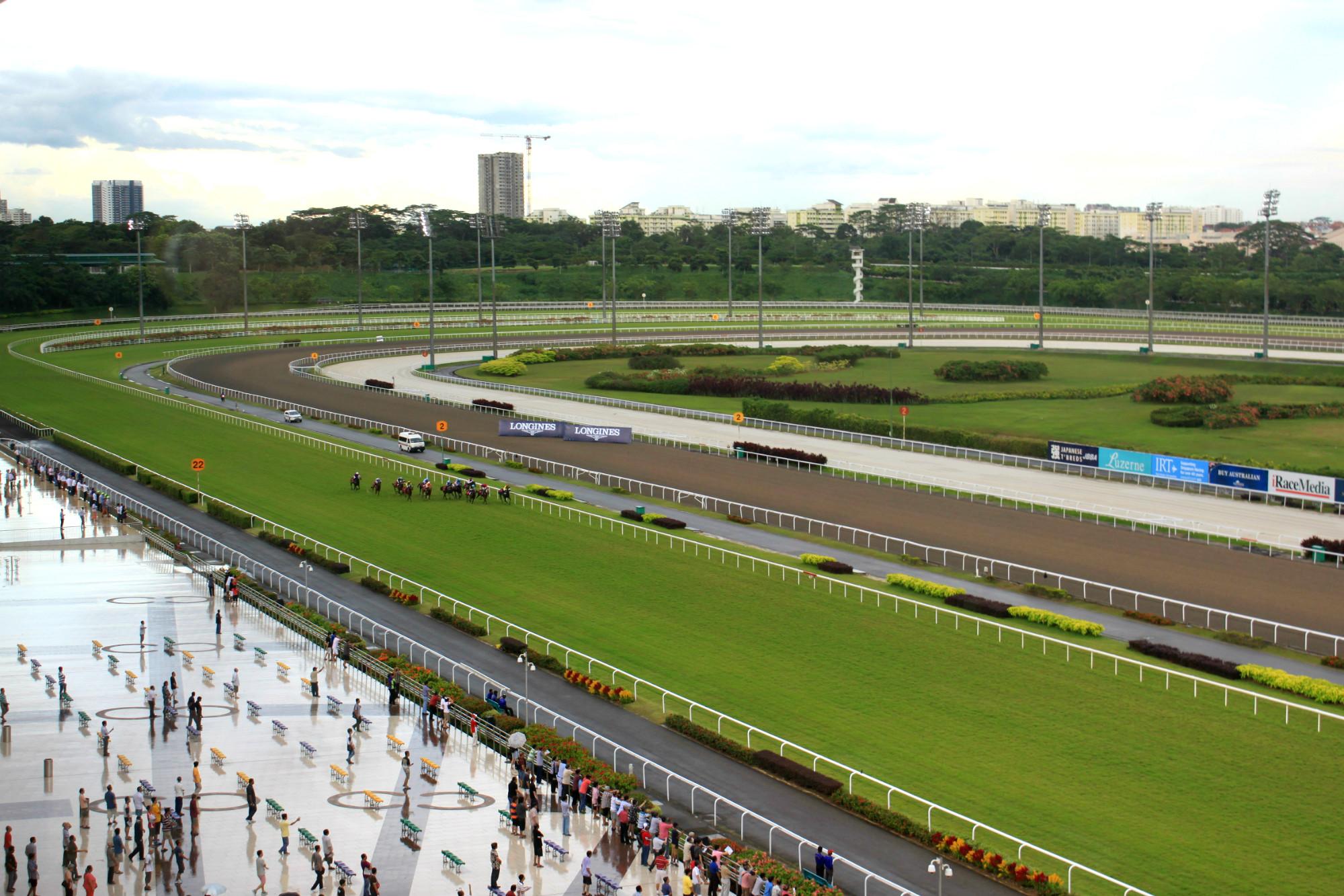horse racing4