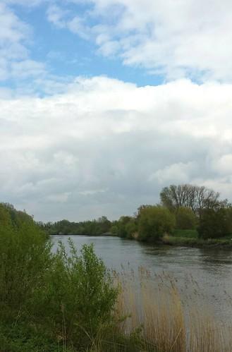 De Schelde