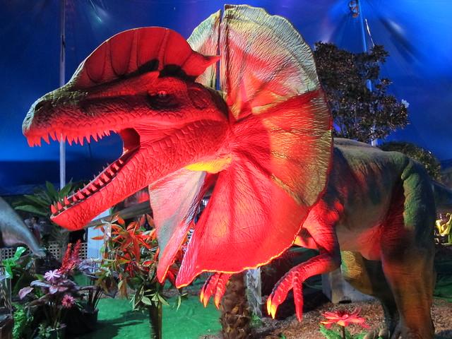 Frill Necked Dinosaur ...