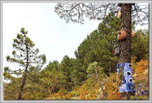 5 Ruta de los Duendes y Bosque encantado