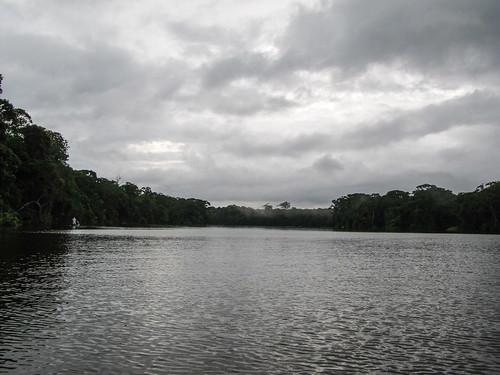 Tortuguero: excursion sur les canaux à la recherche d'animaux...