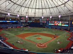 Rays at the Trop