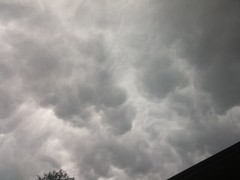 I was taking out the trash and noticed the evil looking clouds. I'm near Eastchase and I30 in east Fort Worth. These are unedited pics.