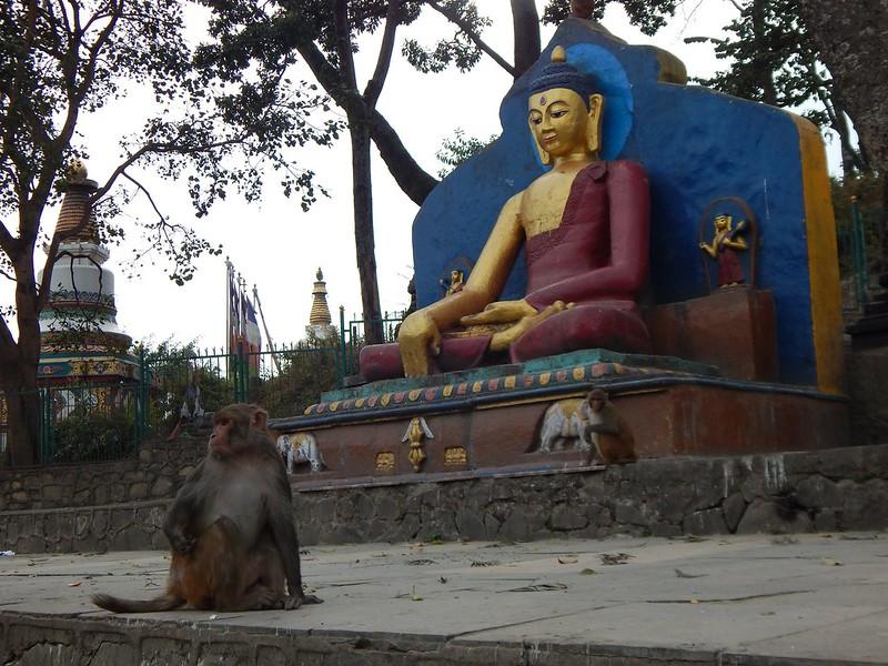 150208 Kathmandu (101) (2304 x 1728)